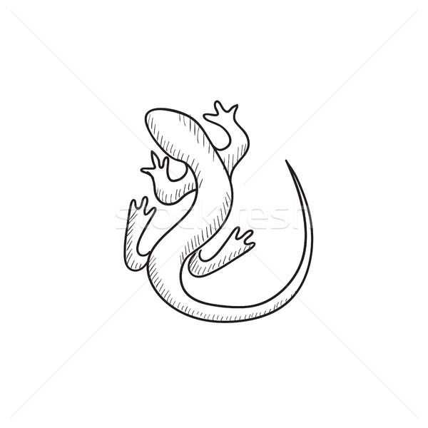 Jaszczurka szkic ikona wektora odizolowany Zdjęcia stock © RAStudio