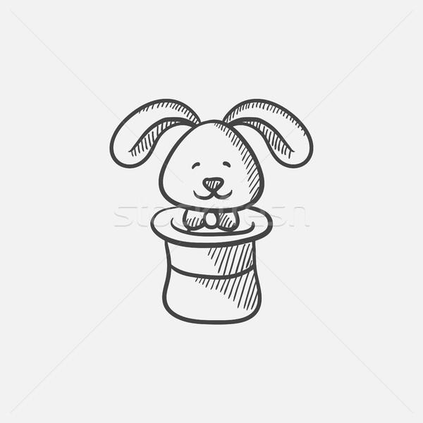Królik magik hat szkic ikona internetowych Zdjęcia stock © RAStudio
