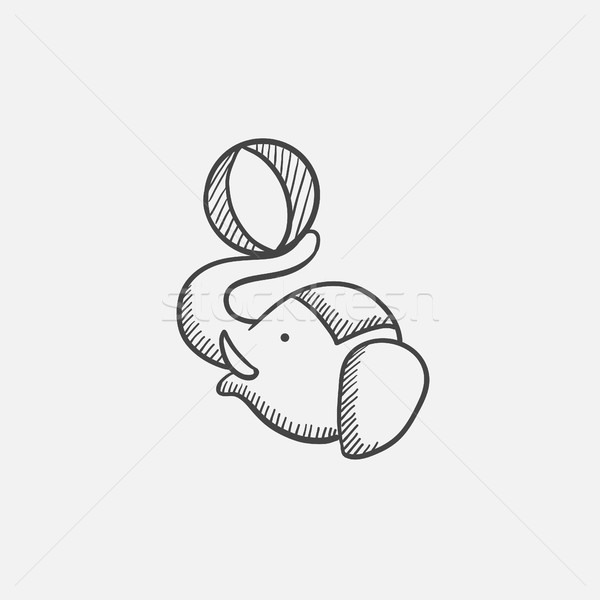 Circus elephant playing with ball sketch icon. Stock photo © RAStudio