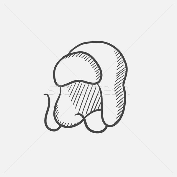 Warm fur cap sketch icon. Stock photo © RAStudio