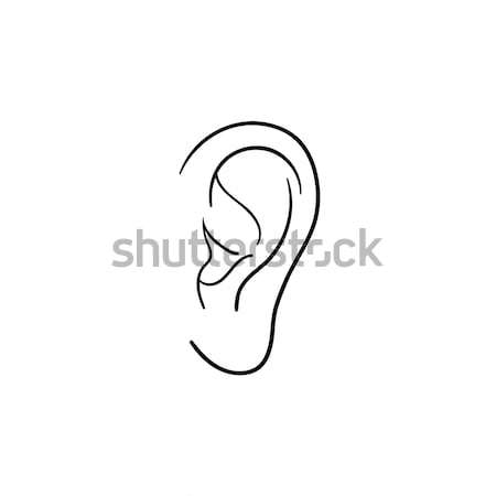Human ear hand drawn outline doodle icon. Stock photo © RAStudio