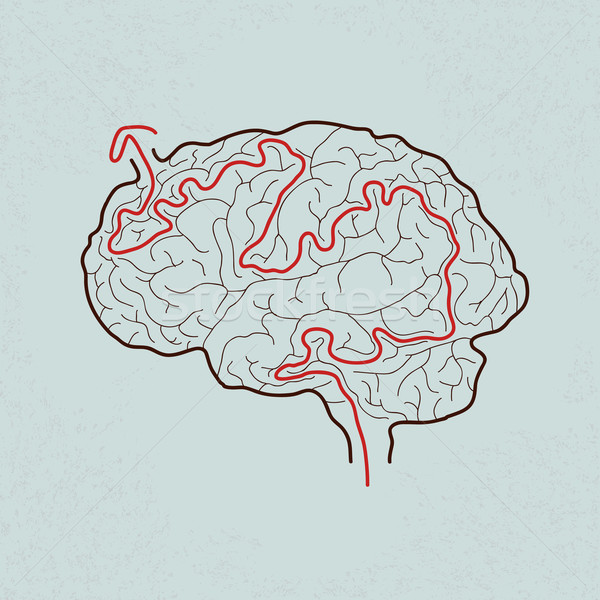 brain maze with correct path , Vector EPS10 Stock photo © ratch0013