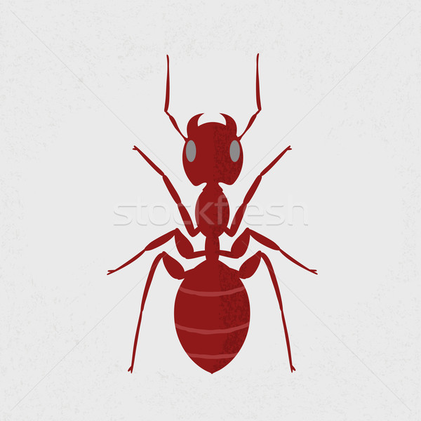 Stock photo: Red ant , eps10 vector format