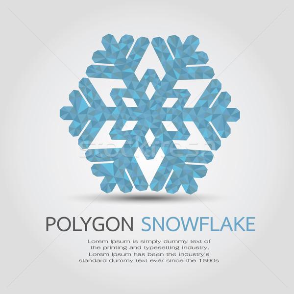 Veelhoek sneeuwvlok eps10 vector formaat abstract Stockfoto © ratch0013