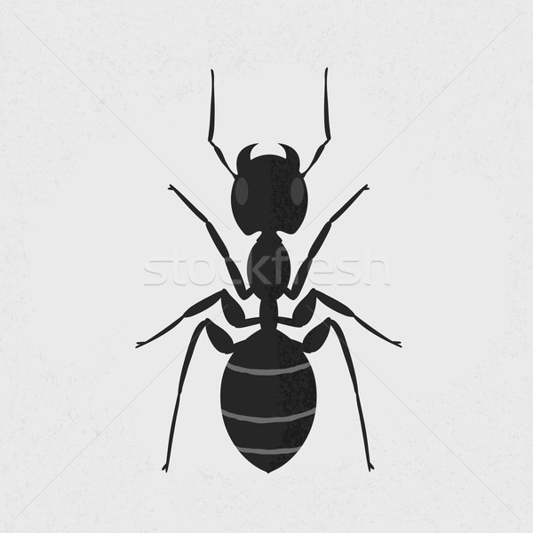 Stock photo: Black ant , eps10 vector format