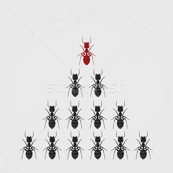 Ant leader , eps10 vector format Stock photo © ratch0013
