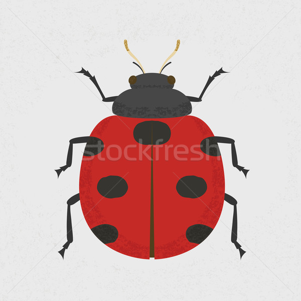 Lady Bug , eps10 vector format Stock photo © ratch0013