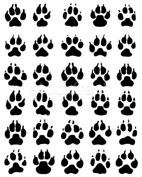 print of paw of dogs Stock photo © ratkom