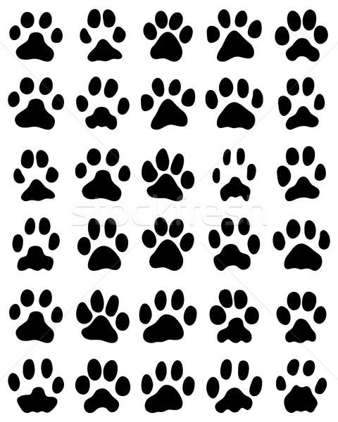 Nyomtatott macskák mancsok fekete fehér vektor Stock fotó © ratkom