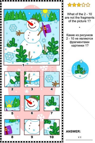 Navidad invierno año nuevo Foto enigma muñeco de nieve Foto stock © ratselmeister