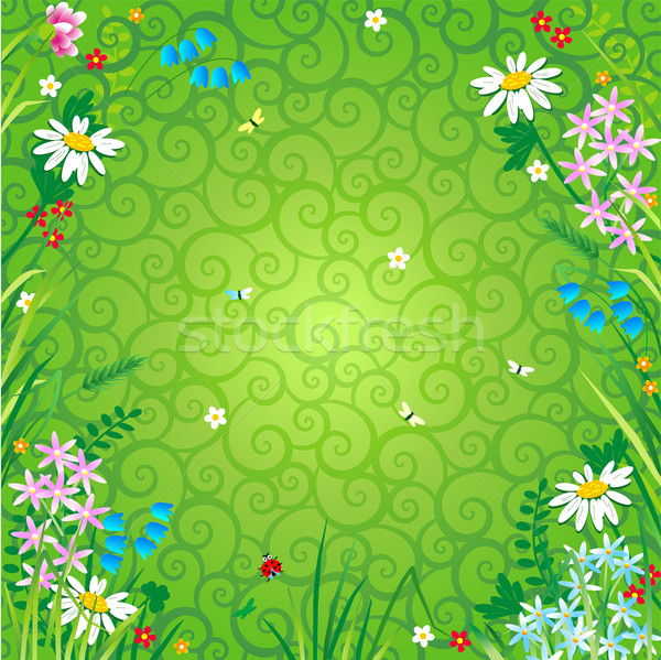 Spring or summer floral background Stock photo © ratselmeister