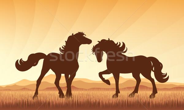 Horses in field on sunset background vector silhouette illustrat Stock photo © Ray_of_Light
