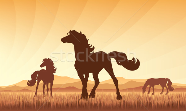 Horses in field on sunset background vector silhouette illustrat Stock photo © Ray_of_Light