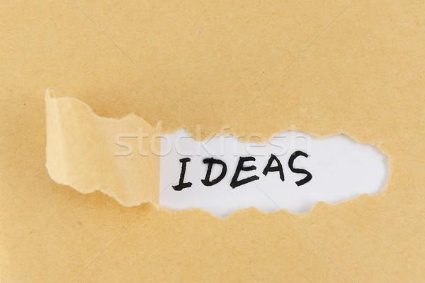 Ideas word Stock photo © raywoo