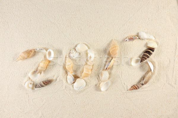 2013 new year Stock photo © raywoo