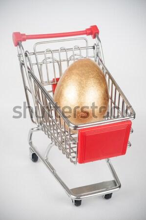 Golden eggs Stock photo © raywoo