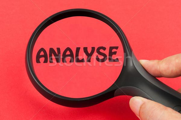 Analyse Stock photo © raywoo
