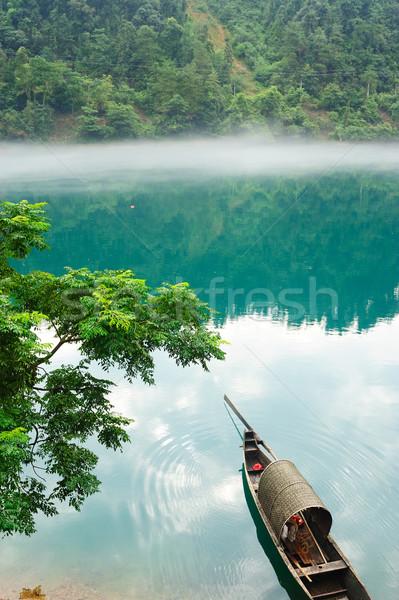 реке туманный фото воды древесины Сток-фото © raywoo
