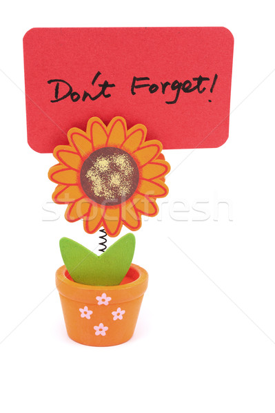 Don't forget Stock photo © raywoo