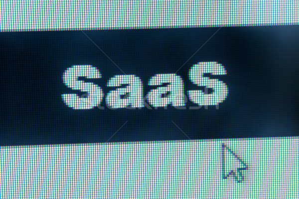 SaaS word Stock photo © raywoo