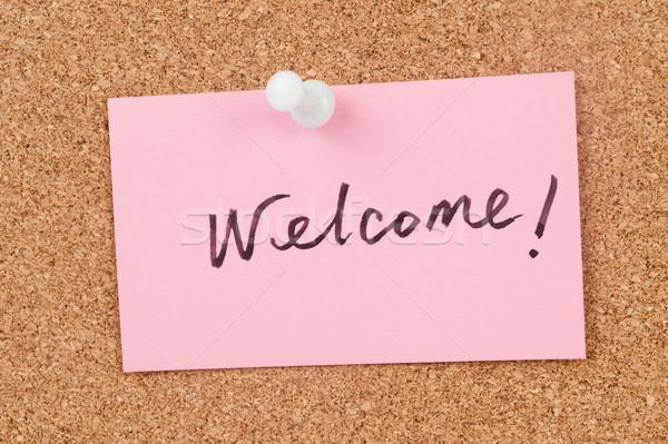 Welcome Stock photo © raywoo