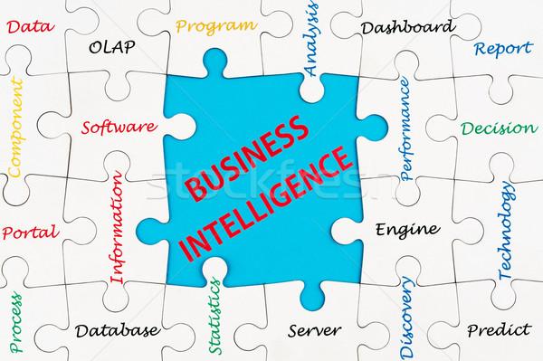 ビジネス インテリジェンス 単語 雲 グループ ジグソーパズル ストックフォト © raywoo