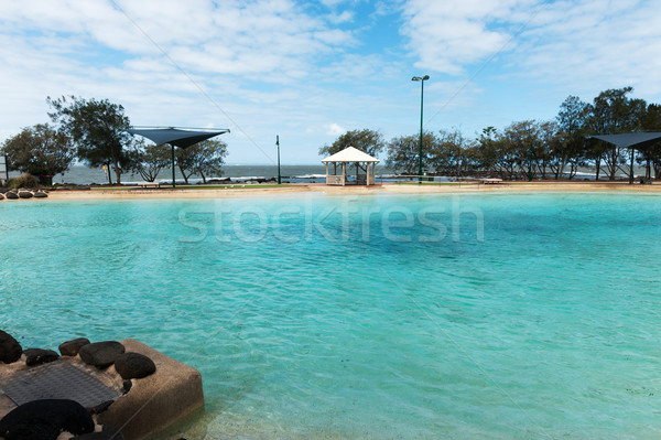 Бассейн океана Брисбен Австралия дерево лет Сток-фото © raywoo