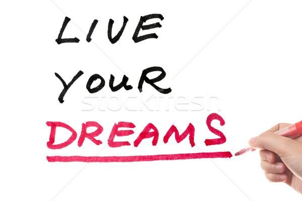 Yaşamak düşler sözler yazılı beyaz tahta mutlu Stok fotoğraf © raywoo