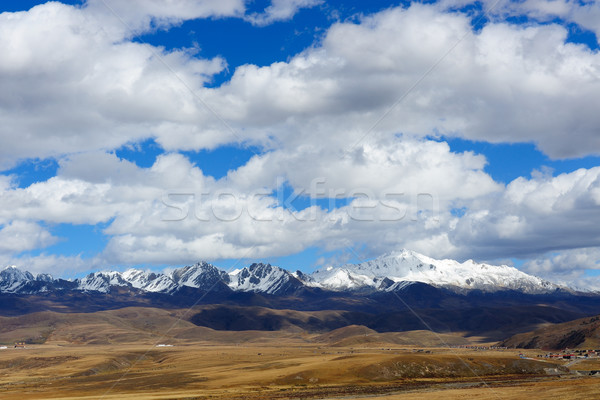 Paisaje occidental meseta China hierba nieve Foto stock © raywoo