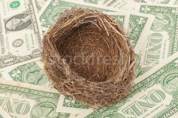 Bird nest Stock photo © raywoo