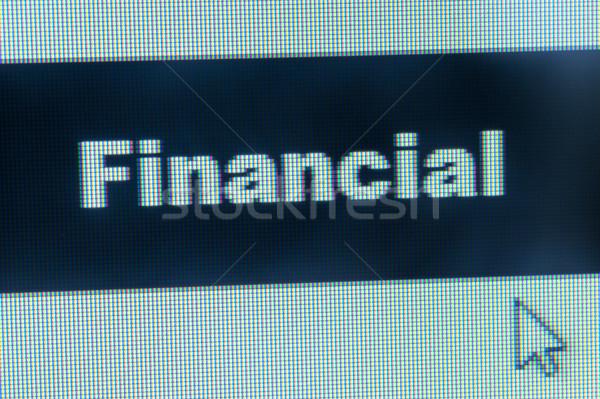 Financière mot curseur ordinateur souris Photo stock © raywoo