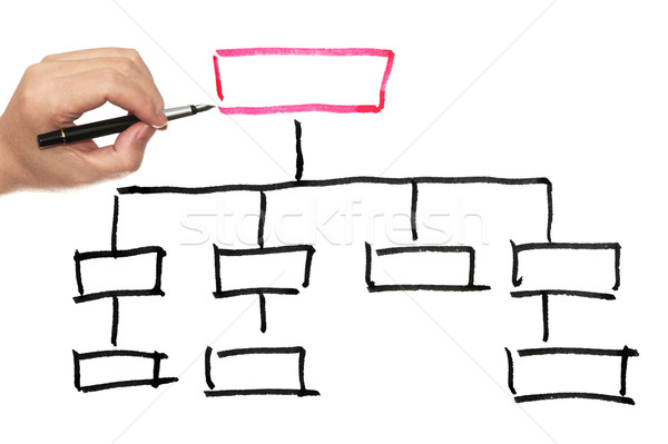 Organization chart Stock photo © raywoo