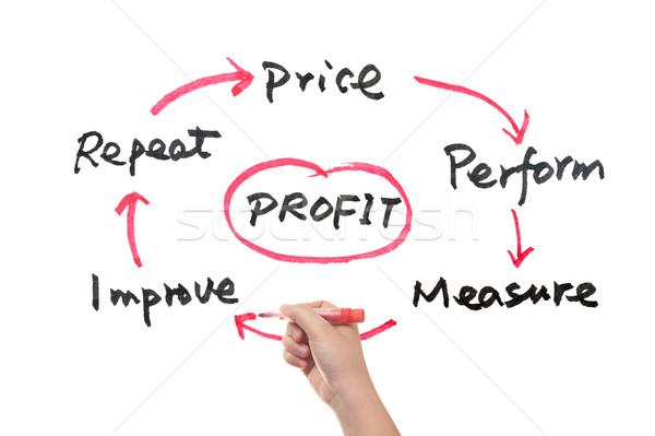 Profit concept Stock photo © raywoo