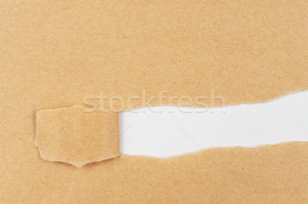 Torn paper Stock photo © raywoo
