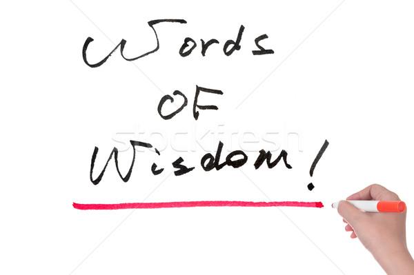 Woorden wijsheid geschreven hersenen schrijven Stockfoto © raywoo