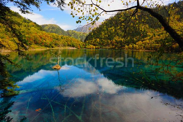 Forest and lake landscape of China jiuzhaigou Stock photo © raywoo