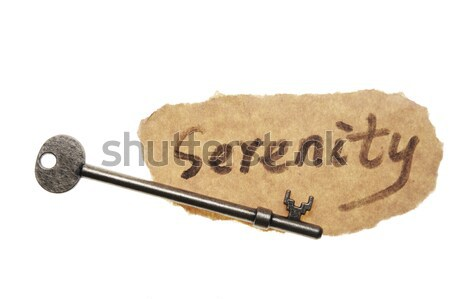 Old key and leadership word Stock photo © raywoo