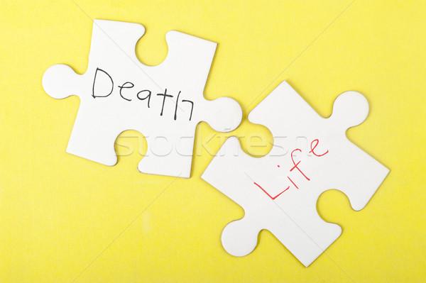 Muerte vida palabras escrito dos piezas Foto stock © raywoo