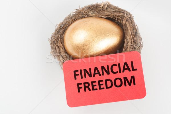金融 自由 金の卵 鳥の巣 卵 にログイン ストックフォト © raywoo
