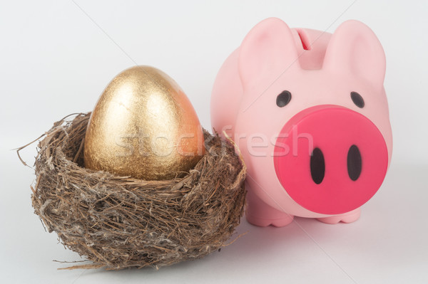 Golden egg, piggy bank and bird nest Stock photo © raywoo