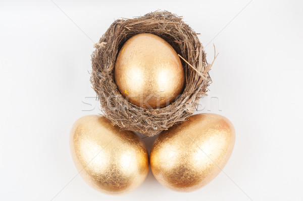Golden eggs and bird nest Stock photo © raywoo