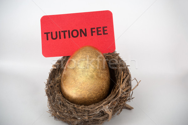 Tuition fee concept Stock photo © raywoo