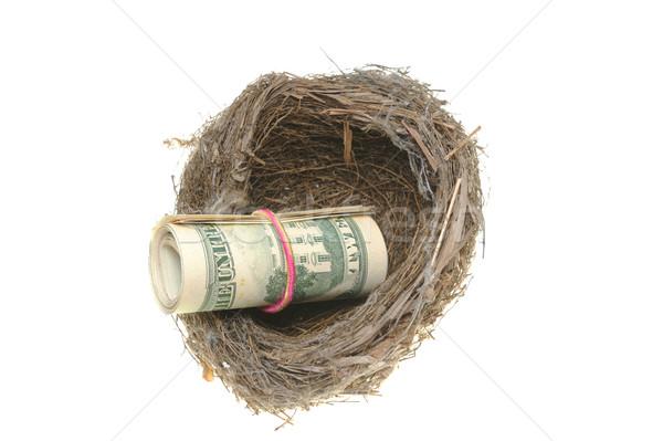 鳥の巣 ロール ドル 孤立した 白 お金 ストックフォト © raywoo