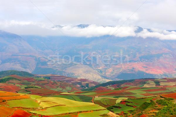 Piros föld délnyugat Kína Föld mező Stock fotó © raywoo