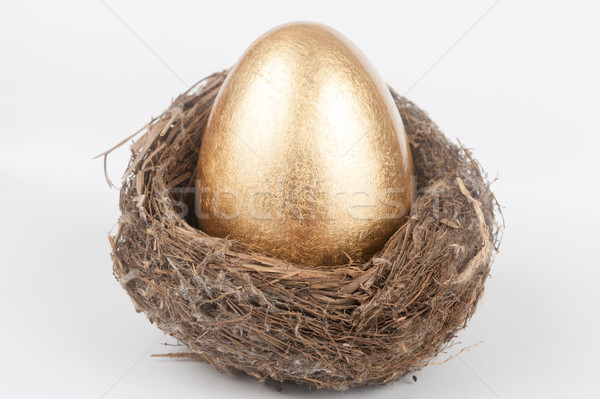 Golden egg in bird nest Stock photo © raywoo