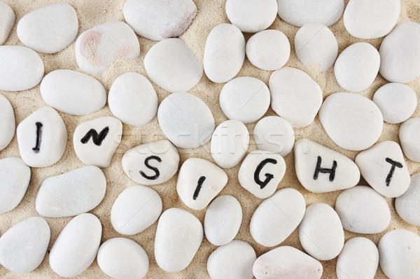 Insight word Stock photo © raywoo