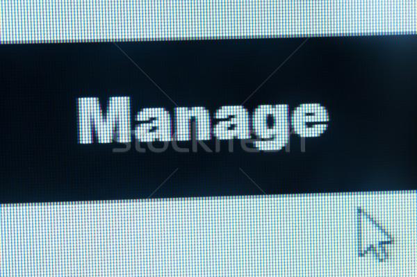 Manage word and cursor Stock photo © raywoo