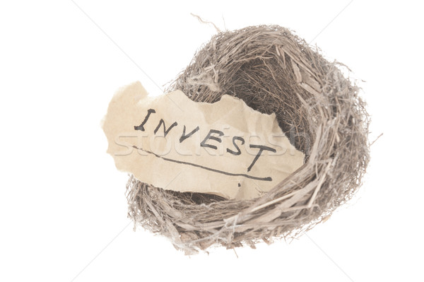 Invest concept Stock photo © raywoo