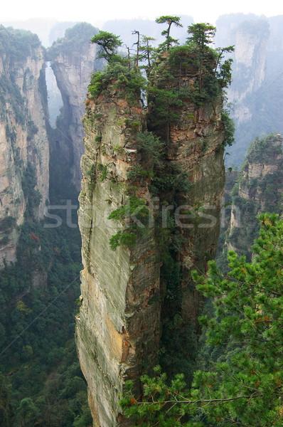 Dik dağ orman park seyahat Asya Stok fotoğraf © raywoo