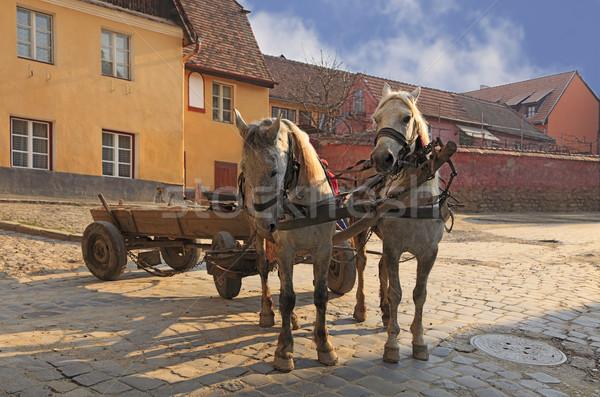 Streets of Sighisoara-Transylvania,Romania Stock photo © RazvanPhotography